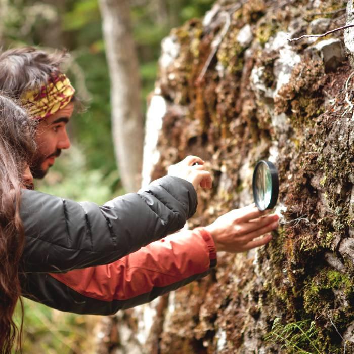 Parque Omora | Ecoturismo con lupa