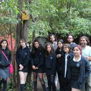 Urban birds workshop at Carmela Carvajal School