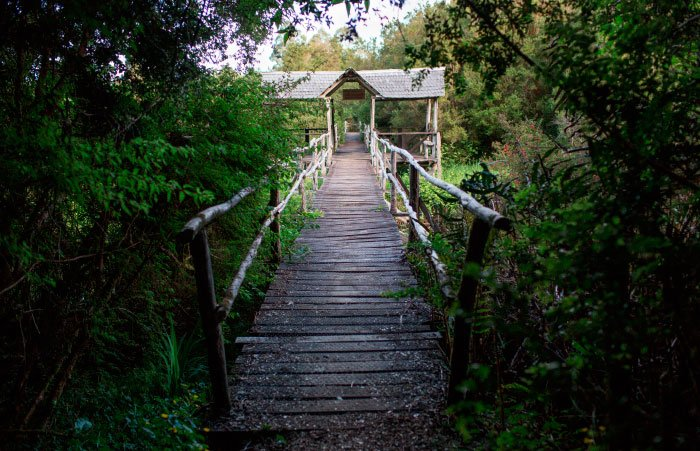 Estación Biológica Senda Darwin