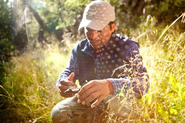 Trabajo de la comunidad en Parque Etnobotánico Omora | Foto: Daniel Casado